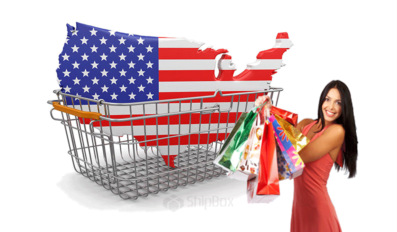 мир интернет-шоппинга в США